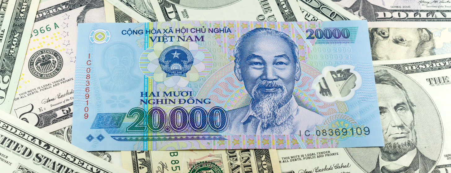 the power of remittances to Vietnam